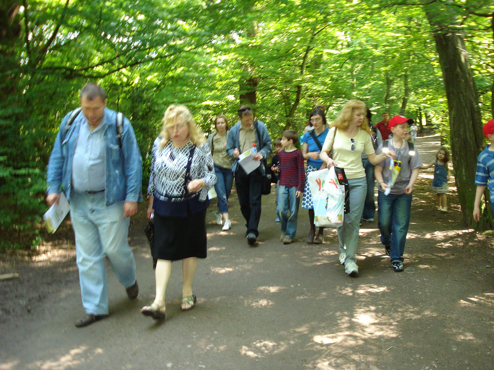 Nature visit to nearby Highgate Woods, June 2008